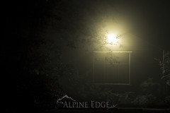 Eerie and Mysterious (AlpineEdge) Tags: longexposure light house mist window strange leaves misty fog mystery night dark scary dangerous darkness eerie creepy spooky adventure frame mysterious feeling shrubs diffused lateatnight uninviting diffusedlight makesthehaironyourneckstandup