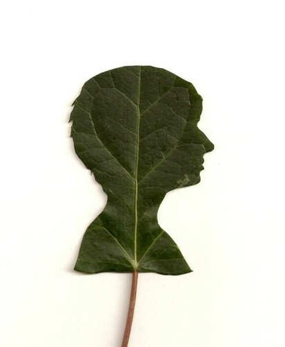 silhouette portrait leaf cutting