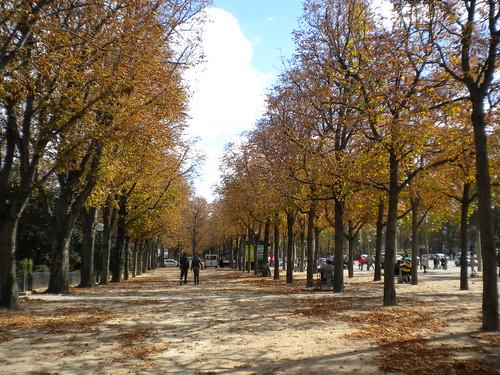 シャンゼリゼ大通りの並木道