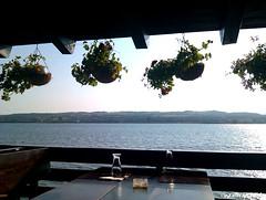 on the romanian shore (rain's child) Tags: river restaurant view serbia shore romania duna danube donau