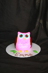 "Owl smash cake • <a style=""font-size:0.8em;"" href=""http://www.flickr.com/photos/60584691@N02/6183907742/"" target=""_blank"">View on Flickr</a>"