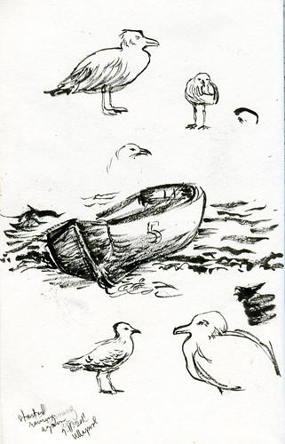 Ullapool shore