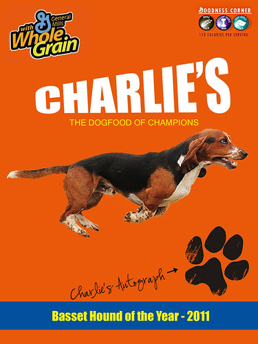 Charlie - The Strange but Loveable Hound!