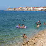 Playful swimming at Piran's coast with colorful buildings