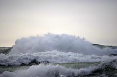 Phrensy (Dumitru BULIGA) Tags: ocean california ca nature san francisco