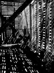 Sunshower (Corn Crib) (David Hoffman '41) Tags: wood light shadow blackandwhite bw rural reflections virginia corn farm country nb crib slats agriculture sunshower fosterfalls diagonals verticals horizontals nationalregisterofhistoricplaces selfsufficiency nrhp wythecounty miltjackson newrivertrailstatepark fosterfallshistoricdistrict