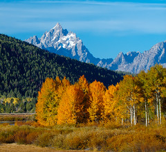 The OxBow Bend Teton Fall (wrtrekker (Jerry T Patterson)) Tags: sunset sunrise dusk dawn twilight tetons mountains flowers wildflowers sping summer park parks tnp ynp west horse western jackson wyoming cowboys ranch camp camping hike hiking patterson lupine balsamroot muleears bison buffalo elk antelope pronghorn snakeriver moose wildlife bear grizzly lodge oxbow oxbowbend rv canon 60d