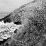 Gower-Coast