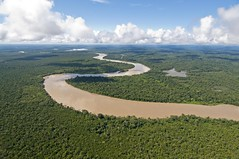 Atrato River (Caranpaima) Tags: rio river rainforest colombia selva jungle meander choco wetland meandering meandro humedal humeda atrato