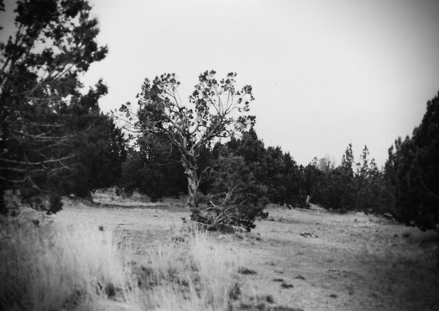 Film post processed from 1990, Utah
