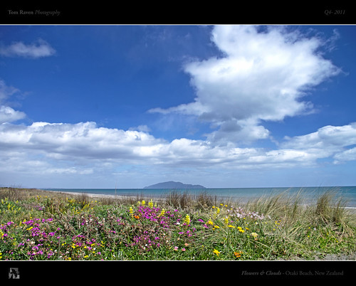 Flowers and Clouds by TomRaven