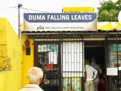 Duma Falling Leaves (bdinphoenix) Tags: africa southafrica nikon d2x capetown nightclub district6 barrywilliamsphotography
