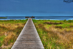 A Walk To The Bay (Bill Maksim Photography) Tags: photography bay pier dock weeds north hatteras carolina shallow outer crabs hdr banks sittin maksim abigfave