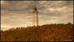Blaavandshug - HDR (mokastet) Tags: autumn fall denmark hdr top20lh lighthousetrek doublyniceshot doubleniceshot mygearandme mokastet