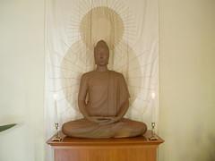 Auckland Buddhist Centre buddha