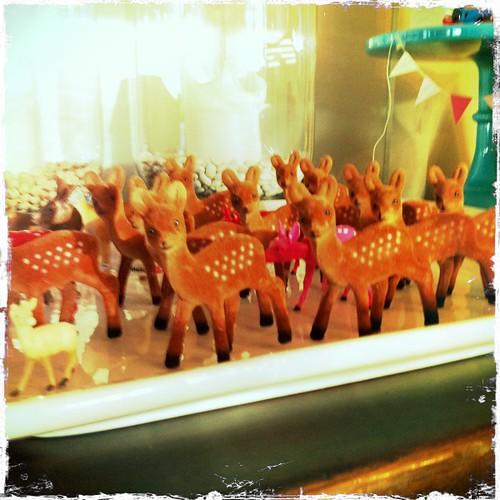 forest full of deer