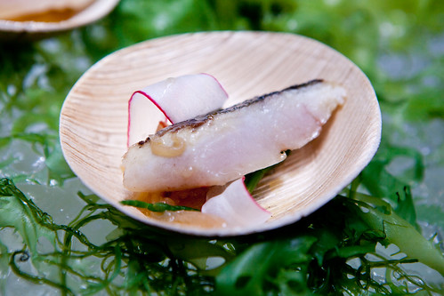 Spanish Mackerel Escabeche from Yuhi Fujinaga, Bar Basque
