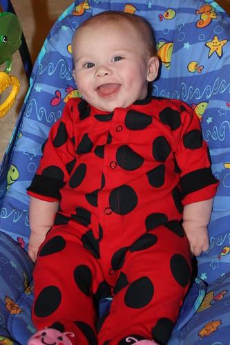 Little Lulu Ladybug