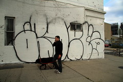 adek (Luna Park) Tags: nyc dog ny newyork brooklyn graffiti walker lunapark adek btm