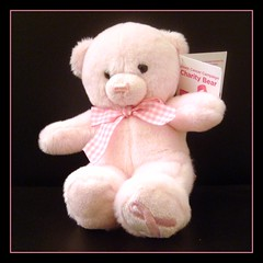 """Charity Bear is happy to share a BCA hug and smile."""