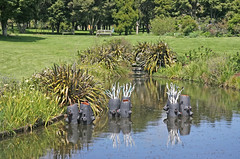 20 OCT 11 18°C AUCKLAND BOTANICAL GARDENS (32 Blocks) Tags: newzealand auckland aucklandbotanicalgardens sculptureinthegardens