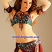 Belly-Dancer-Maria-Sokolova_focusa2z _model