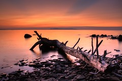 Giant log (KarenR-TB) Tags: ontario sunrise lakesuperior thunderbay sleepinggiant