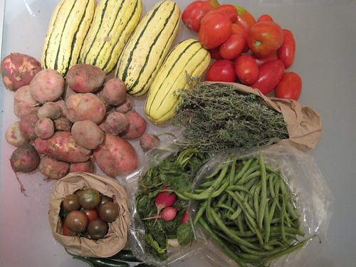 Week #10 Maple Creek Farm Share