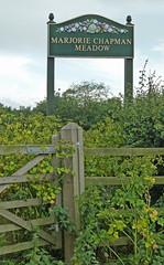 Marjorie Chapman Meadow (Steve Taylor (Photography)) Tags: uk overgrown field kent gate meadow gb ramsgate thanet isleof cliffsend marjoriechapman