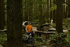 Pipeline (Jeremy J Saunders) Tags: selfportrait bike vancouver mountainbike shore northshore ladder freeride fromme