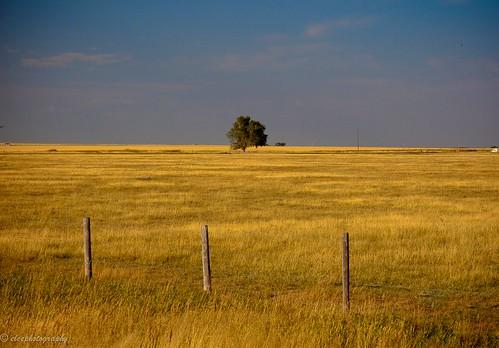 Rural Alberta, Canada