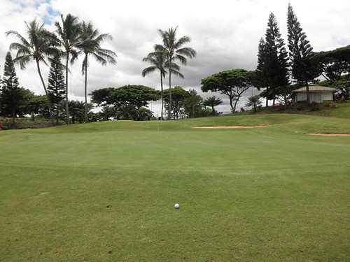 WAIKELE COUNTRY CLUB 247
