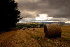 Brilley Hay Bails (JamesWoolley5) Tags: england sky field canon herefordshire hay bails 500d brilley t1i