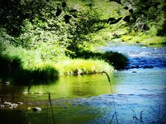 Lake Creek_11 (katiekapow) Tags: oregon creek scenic highcontrast highsaturation lakecreek historictown