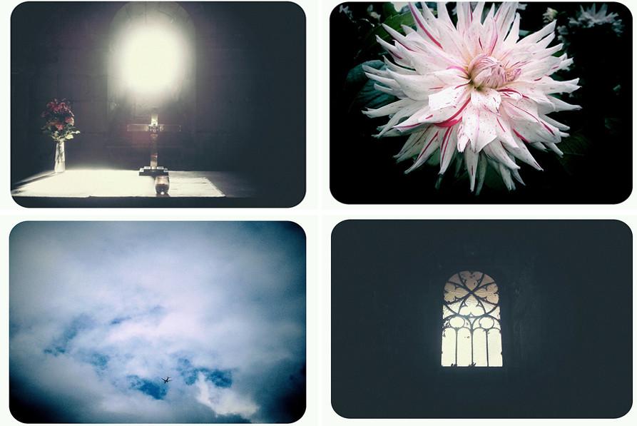 14 new blogs.