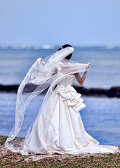 Today's Beach Attire at Kualoa (racketrx) Tags: wedding white hawaii veil oahu kaneohe bow weddingdress kualoaregionalpark wwwfacebookcomkukuiphoto