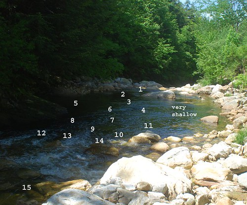 Casting sequence for a Mountain Stream