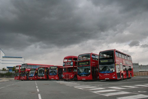 A line up of their current buses