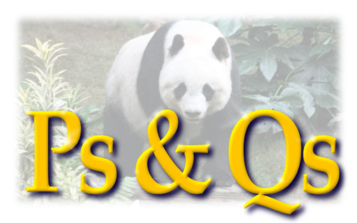 Mind your Ps & Qs to Avoid the Panda Updates