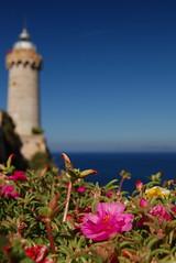 Isola d'Elba a Portoferraio (costinul_ala) Tags: trip travel italy nikon elba europe italia september tuscany toscana settembre livorno isola isoladelba costin d80 bociu costinbociu