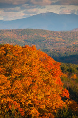 "Vermont Brilliance • <a style=""font-size:0.8em;"" href=""http://www.flickr.com/photos/55747300@N00/6174895229/"" target=""_blank"">View on Flickr</a>"