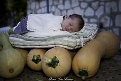 Les petites filles naitraient elles dans les potirons ?? (Montalbano photographie) Tags: baby newborn bb alban nouveaun montalbano alban06