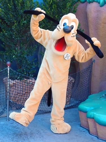 Disneyland - Pluto