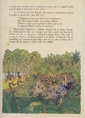 popineau p24