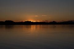 Sunset (camecasius) Tags: sunset water gold goldensunset bodensee radolfzell naturfreundehaus