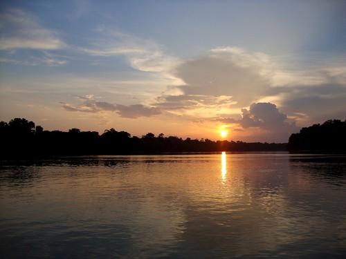 Amazonia201171