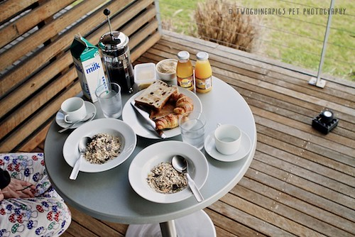 Breakfast at Tonic Hotel, by twoguineapigs pet photography