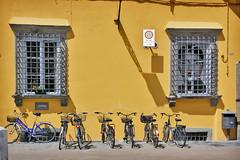 IMG_7442 - 1-640 s à f - 7,1 - EF-S10-22mm f-3.5-4.5 USM @ 22 mm_ (ZX-6R) Tags: city italy bicycle landscapes italian italia place lucca tuscany toscana toscane italie urbanlandscape environnement vehicules christophefaugere wwwchristophefaugerecom httpwwwchristophefaugerecom