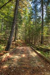 Path over the bridge ({Danny.Hart}) Tags: autumn newyork nikon adirondacks foliage hdr d7000