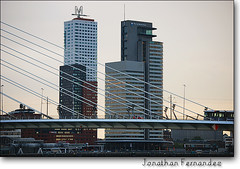 Rotterdam - The Netherlands ! © (Jonathan Fernández Quarré) Tags: holland cars water netherlands skyline skyscraper buildings puente edificios rotterdam agua nikon europa europe thenetherlands holanda montevideo coches rin offices highrises erasmusbrug oficinas worldportcenter erasmusbridge paisesbajos nikond60 riorin jonathanfernandez mokingbird puenteerasmus quarre blinkagain
